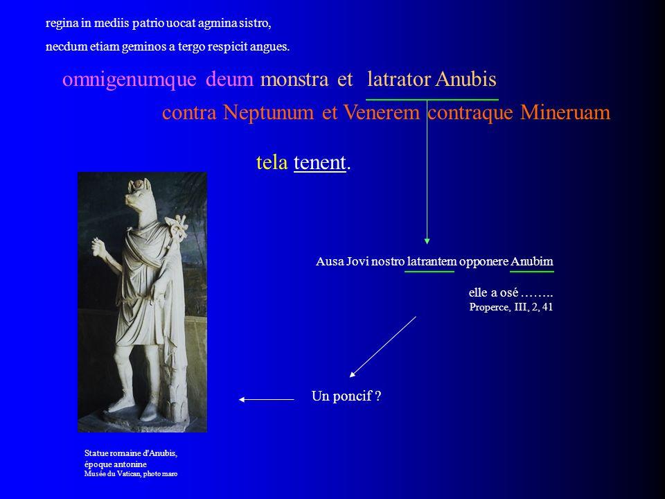 tela tenent. omnigenumque deum monstra et contra Neptunum et Venerem contraque Mineruam Ausa Jovi nostro latrantem opponere Anubim elle a osé …….. Pro