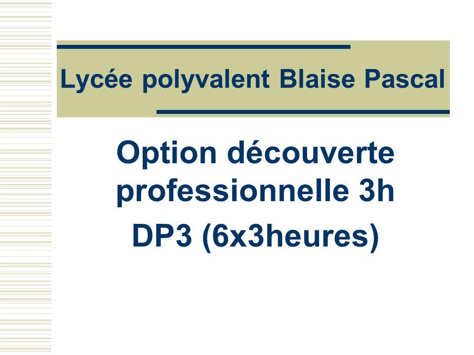 Lycée polyvalent Blaise Pascal Option découverte professionnelle 3h DP3 (6x3heures)