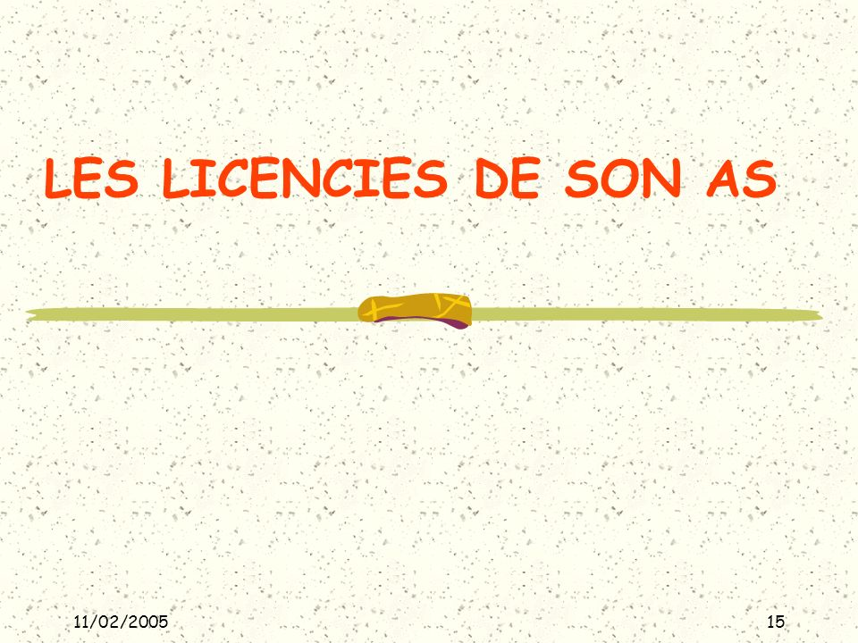 11/02/200515 LES LICENCIES DE SON AS