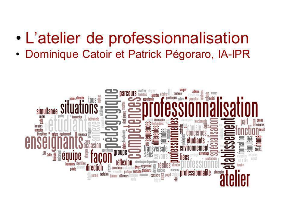 Latelier de professionnalisation Dominique Catoir et Patrick Pégoraro, IA-IPR