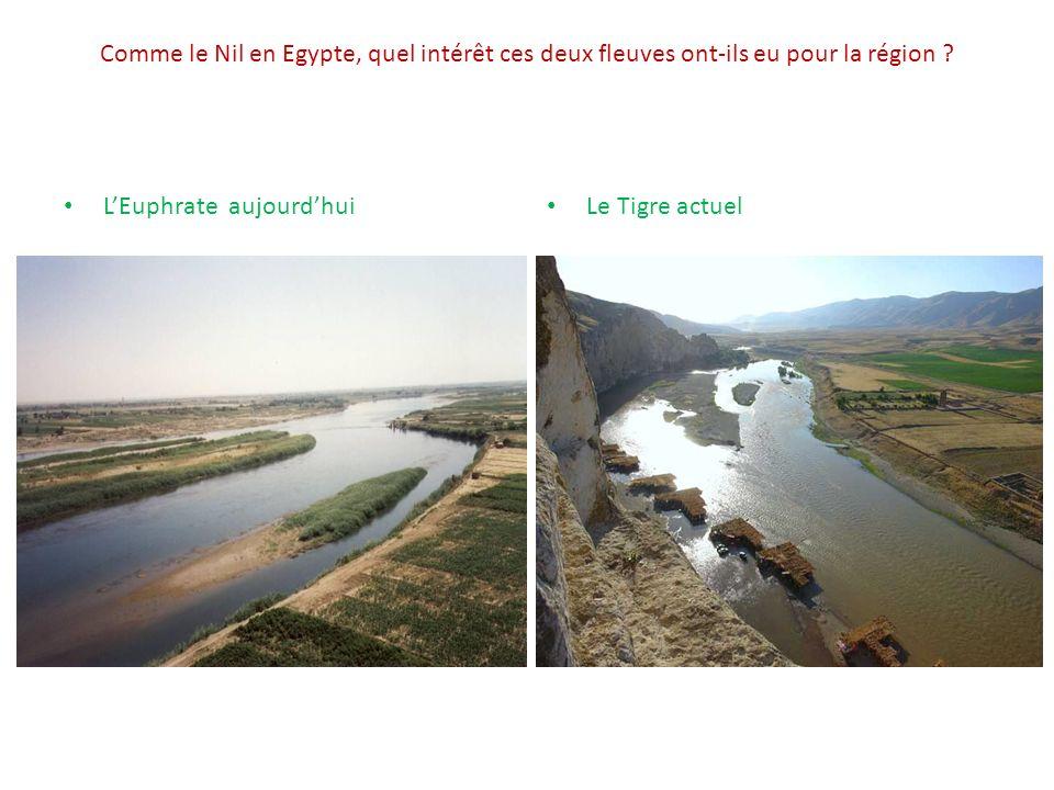 Comme le Nil en Egypte, quel intérêt ces deux fleuves ont-ils eu pour la région .