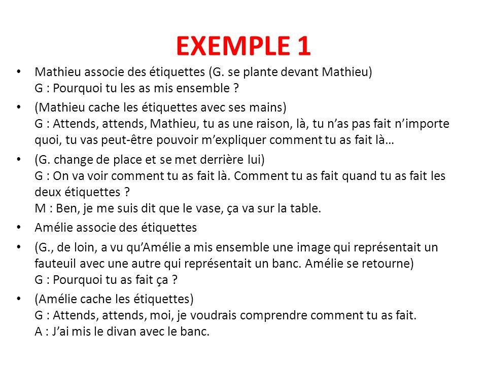 EXEMPLE 1 Mathieu associe des étiquettes (G. se plante devant Mathieu) G : Pourquoi tu les as mis ensemble ? (Mathieu cache les étiquettes avec ses ma