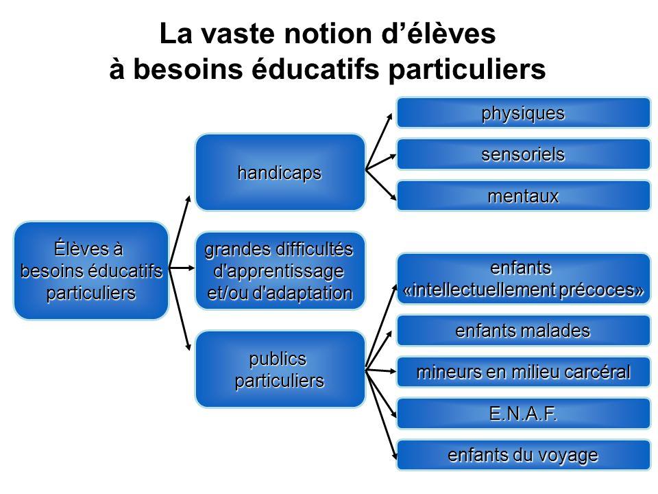 La vaste notion délèves à besoins éducatifs particuliers Élèves à besoins éducatifs particuliers handicaps grandes difficultés d'apprentissage et/ou d