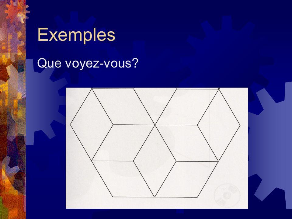 Exemples Que voyez-vous?