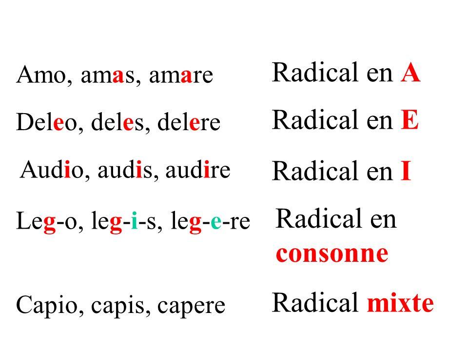 Radical en I Amo, amas, amare Radical en A Deleo, deles, delere Radical en E Audio, audis, audire Leg-o, leg-i-s, leg-e-re Radical en consonne Capio, capis, capere Radical mixte