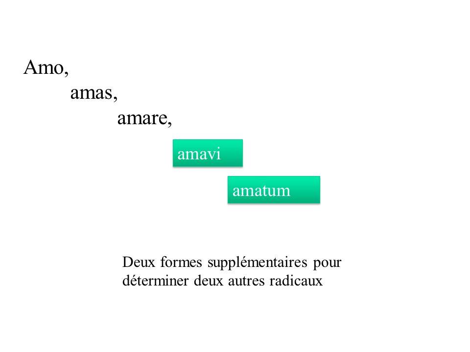 Amo, amas, amare, amavi amatum Deux formes supplémentaires pour déterminer deux autres radicaux