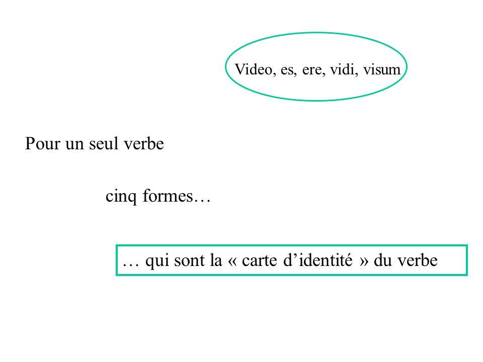 Video, es, ere, vidi, visum cinq formes… … qui sont la « carte didentité » du verbe Pour un seul verbe