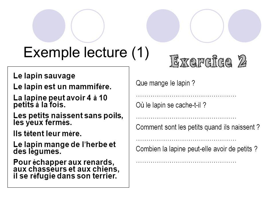 Exemple lecture (1) Le lapin sauvage Le lapin est un mammif è re.
