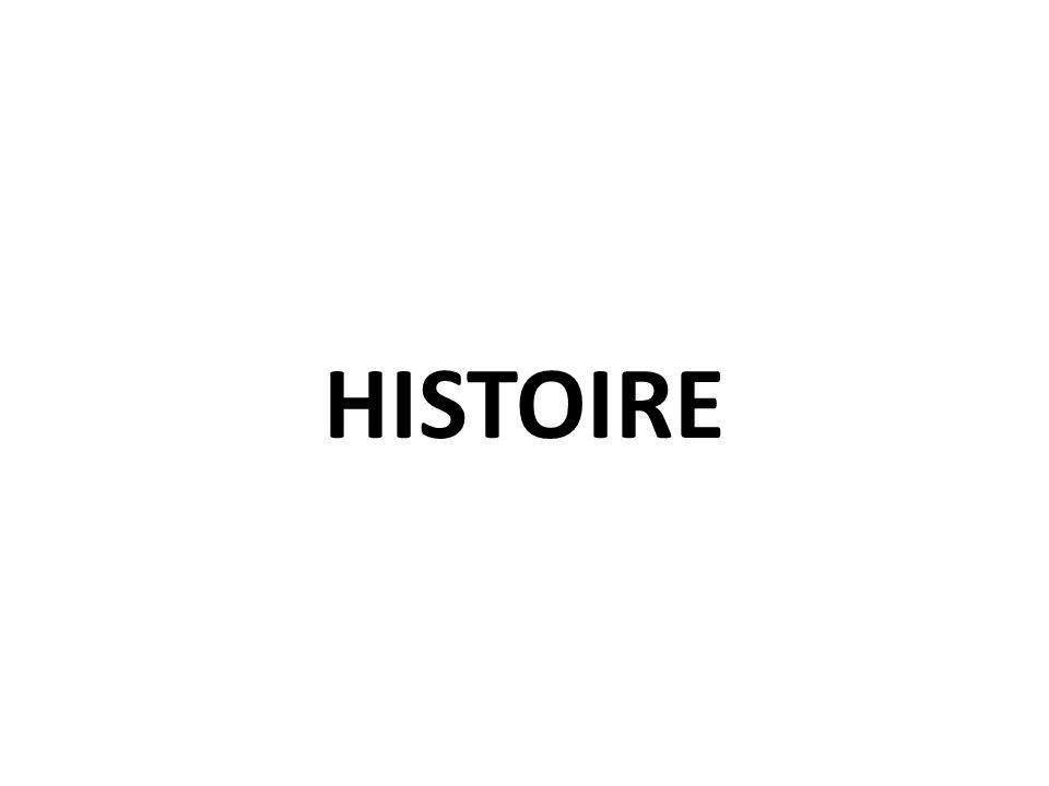 Un programme issu du programme de T ES / L Le fil conducteur du programme dhistoire: Eclairer les enjeux majeurs du monde actuel par le regard spécifique de lhistorien.