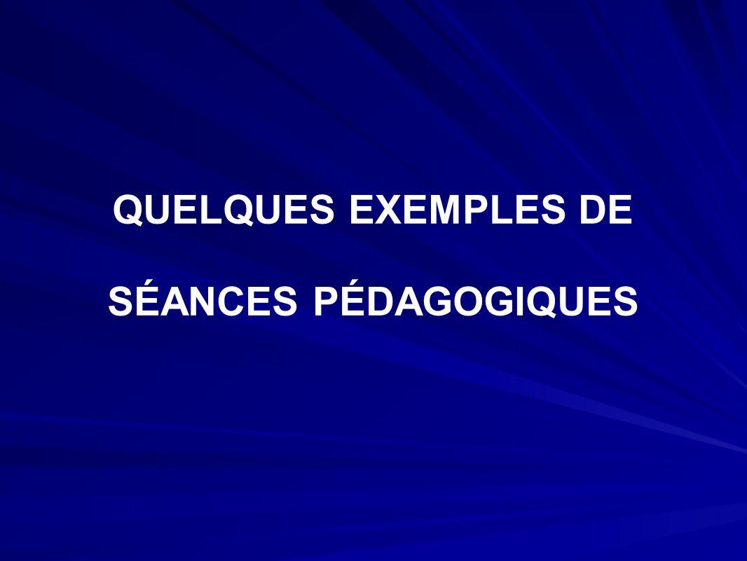 QUELQUES EXEMPLES DE SÉANCES PÉDAGOGIQUES