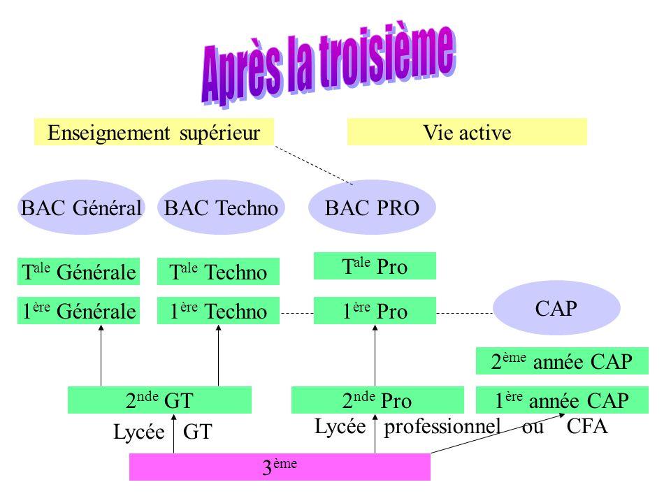 3 ème 2 nde GT2 nde Pro1 ère année CAP 2 ème année CAP 1 ère Techno1 ère Générale T ale GénéraleT ale Techno BAC GénéralBAC Techno CAP 1 ère Pro T ale Pro BAC PRO Lycée GT Lycée professionnel ou CFA Enseignement supérieurVie active