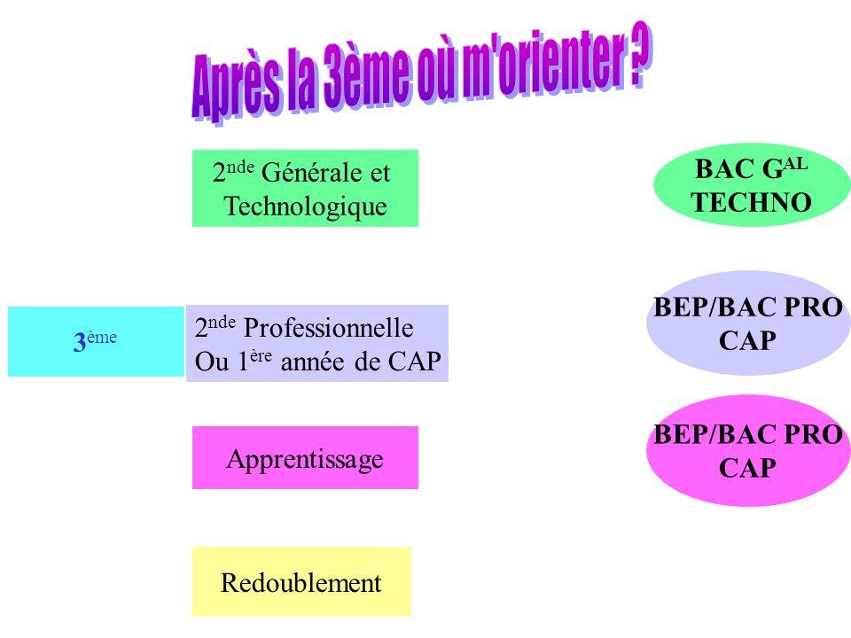 3 ème 2 nde Générale et Technologique Apprentissage Redoublement BEP/BAC PRO CAP BAC G AL TECHNO BEP/BAC PRO CAP 2 nde Professionnelle Ou 1 ère année de CAP