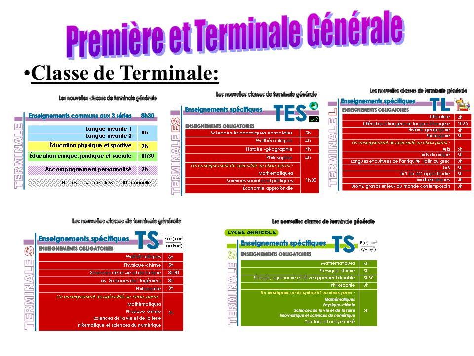 Classe de Terminale: