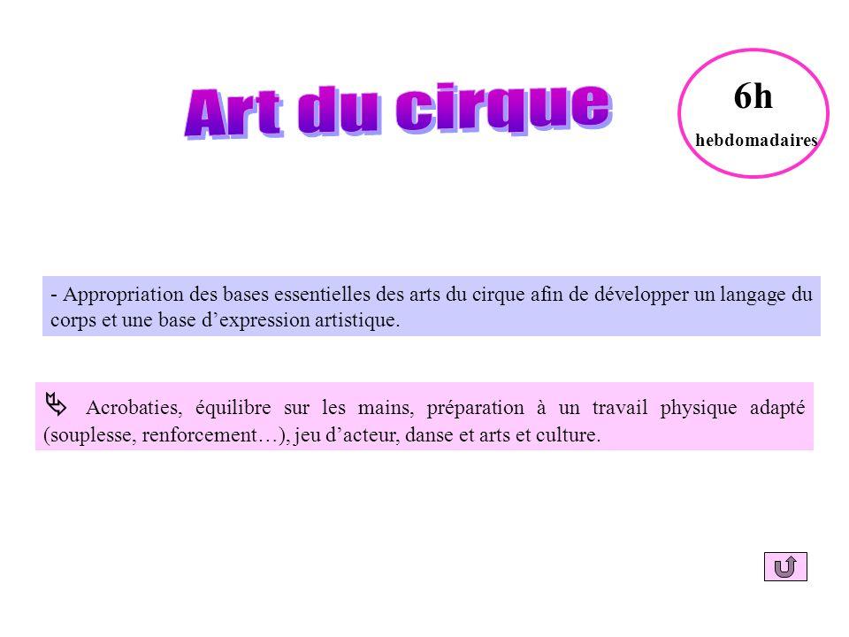 - Appropriation des bases essentielles des arts du cirque afin de développer un langage du corps et une base dexpression artistique.