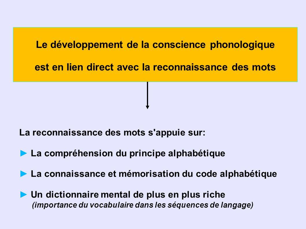 Le développement de la conscience phonologique est en lien direct avec la reconnaissance des mots La reconnaissance des mots s appuie sur: La compréhension du principe alphabétique La connaissance et mémorisation du code alphabétique Un dictionnaire mental de plus en plus riche (importance du vocabulaire dans les séquences de langage)