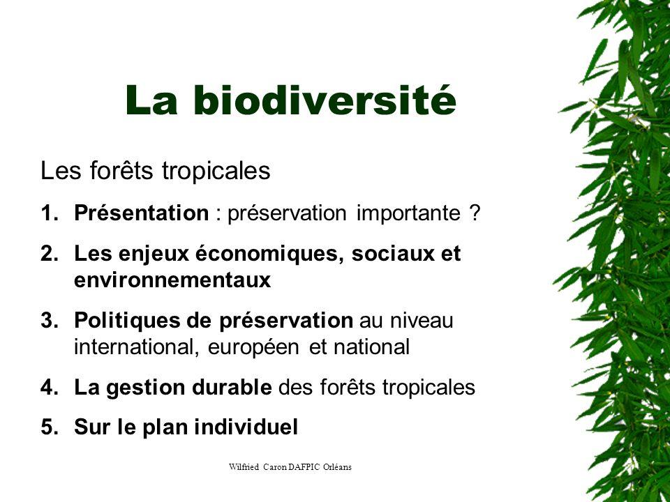 Wilfried Caron DAFPIC Orléans La biodiversité Les forêts tropicales 1.Présentation : préservation importante ? 2.Les enjeux économiques, sociaux et en