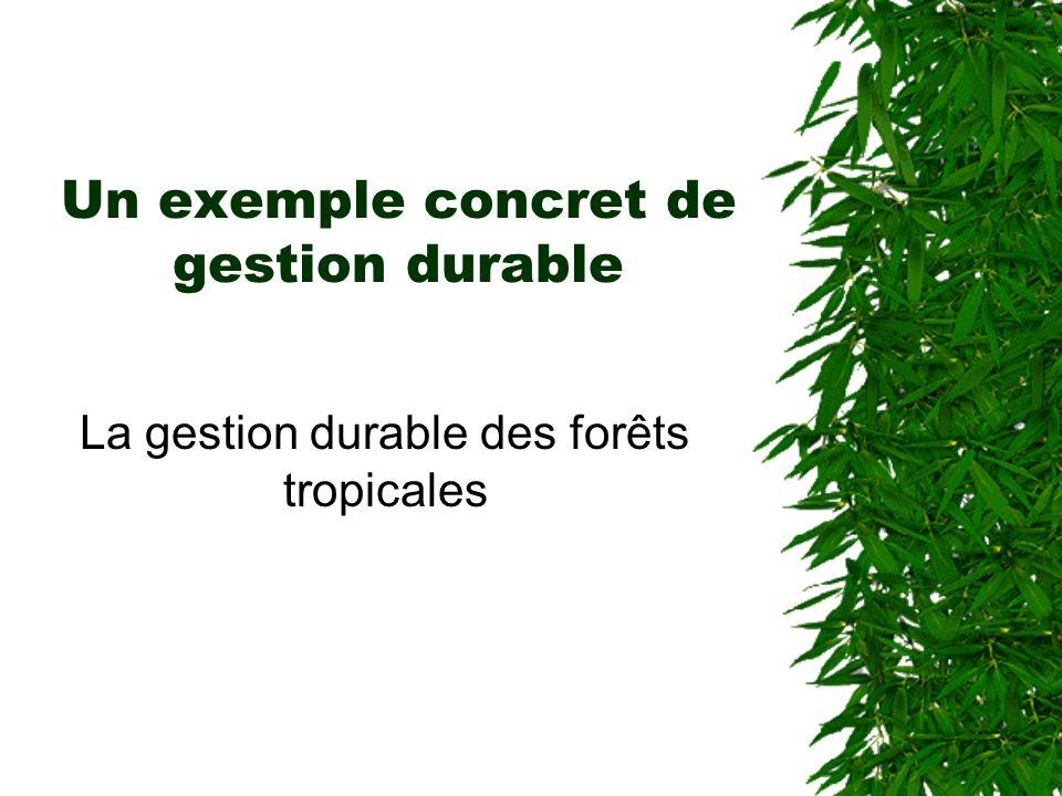 Un exemple concret de gestion durable La gestion durable des forêts tropicales