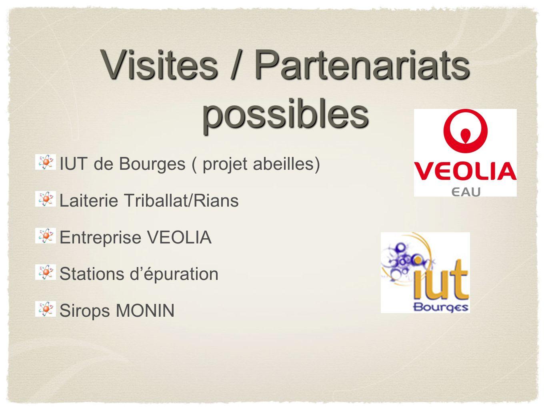 Visites / Partenariats possibles IUT de Bourges ( projet abeilles) Laiterie Triballat/Rians Entreprise VEOLIA Stations dépuration Sirops MONIN