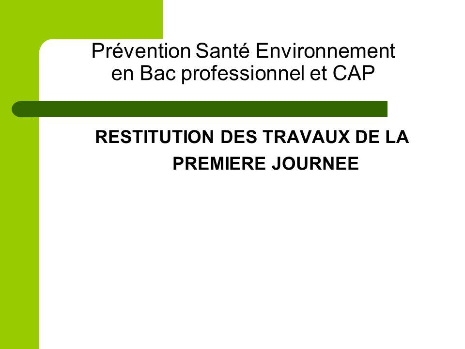 Prévention Santé Environnement en Bac professionnel et CAP RESTITUTION DES TRAVAUX DE LA PREMIERE JOURNEE