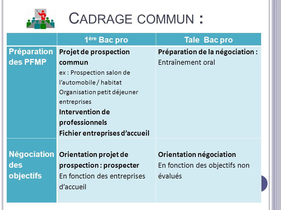 C ADRAGE COMMUN : 1 ère Bac proTale Bac pro Préparation des PFMP Projet de prospection commun ex : Prospection salon de lautomobile / habitat Organisa