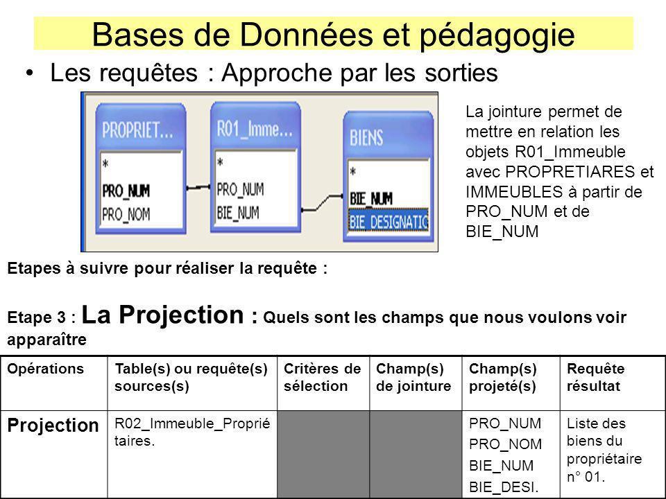 Bases de Données et pédagogie Les requêtes : Approche par les sorties La jointure permet de mettre en relation les objets R01_Immeuble avec PROPRETIAR