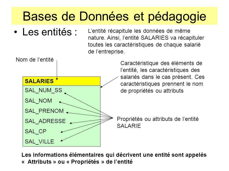 Bases de Données et pédagogie Les entités : SALARIES SAL_NUM_SS SAL_NOM SAL_PRENOM SAL_ADRESSE SAL_CP SAL_VILLE Lentité récapitule les données de même