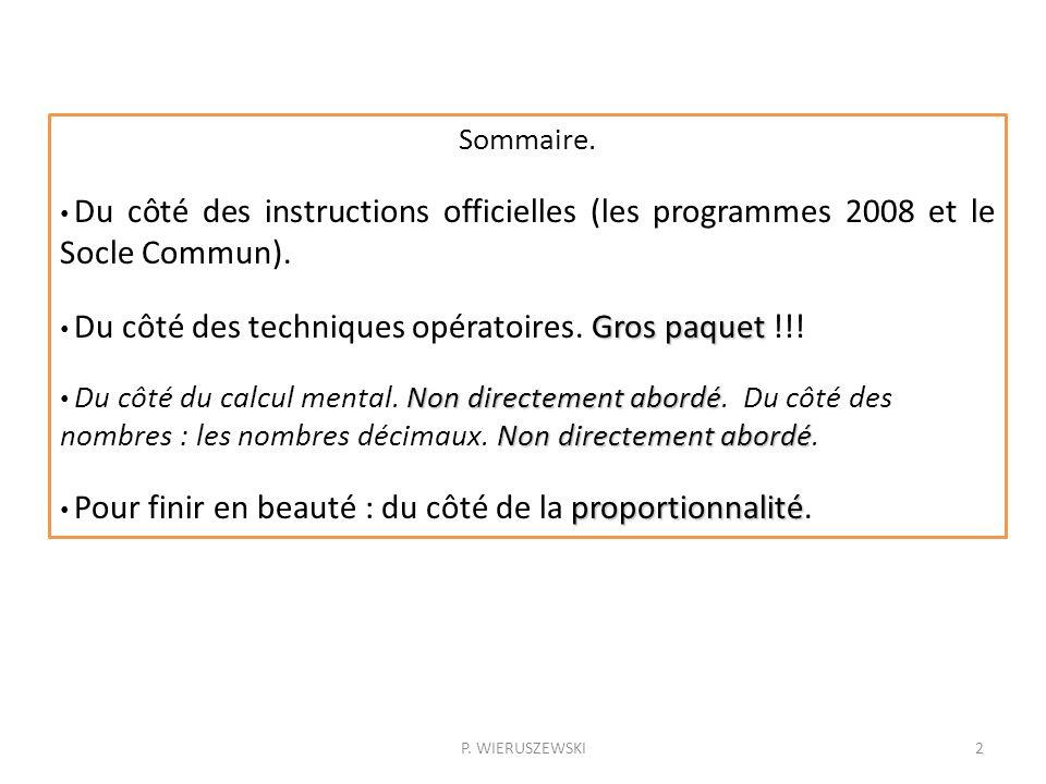 Sommaire. Du côté des instructions officielles (les programmes 2008 et le Socle Commun). Gros paquet Du côté des techniques opératoires. Gros paquet !