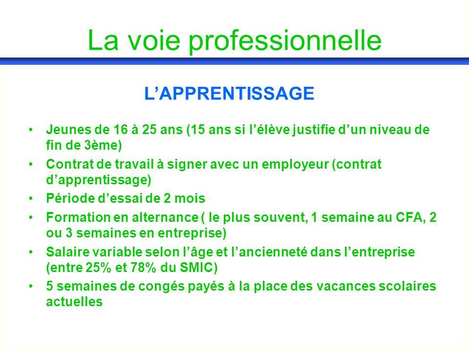 Jeunes de 16 à 25 ans (15 ans si lélève justifie dun niveau de fin de 3ème) Contrat de travail à signer avec un employeur (contrat dapprentissage) Période dessai de 2 mois Formation en alternance ( le plus souvent, 1 semaine au CFA, 2 ou 3 semaines en entreprise) Salaire variable selon lâge et lancienneté dans lentreprise (entre 25% et 78% du SMIC) 5 semaines de congés payés à la place des vacances scolaires actuelles LAPPRENTISSAGE La voie professionnelle