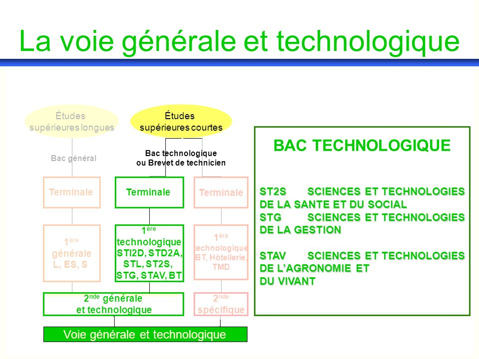 1 ère générale L, ES, S Terminale Bac général Études supérieures longues Études supérieures courtes La voie générale et technologique ST2SSCIENCES ET TECHNOLOGIES DE LA SANTE ET DU SOCIAL STGSCIENCES ET TECHNOLOGIES DE LA GESTION STAVSCIENCES ET TECHNOLOGIES DE LAGRONOMIE ET DU VIVANT BAC TECHNOLOGIQUE Voie générale et technologique 2 nde spécifique 1 ère technologique BT, Hôtellerie, TMD Terminale 2 nde générale et technologique 1 ère technologique STI2D, STD2A, STL, ST2S, STG, STAV, BT Terminale Bac technologique ou Brevet de technicien