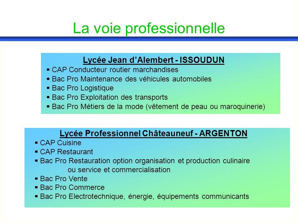 Lycée Jean dAlembert - ISSOUDUN CAP Conducteur routier marchandises Bac Pro Maintenance des véhicules automobiles Bac Pro Logistique Bac Pro Exploitat