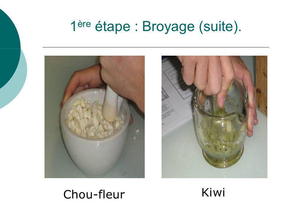1 ère étape : Broyage (suite). Chou-fleur Kiwi