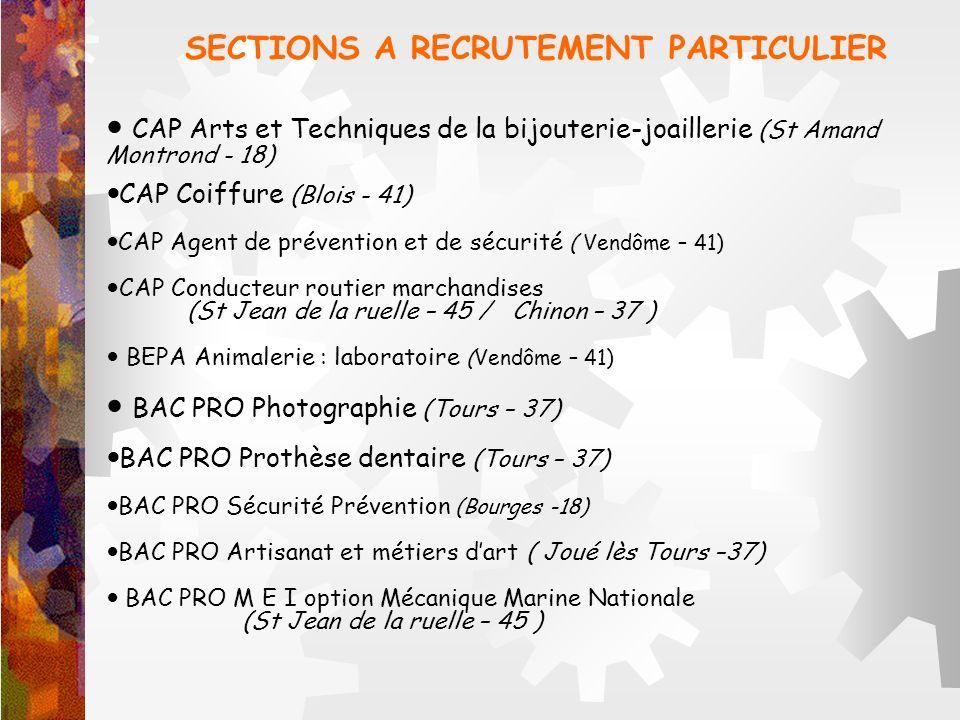 CAP Arts et Techniques de la bijouterie-joaillerie (St Amand Montrond - 18) CAP Coiffure (Blois - 41) CAP Agent de prévention et de sécurité ( Vendôme