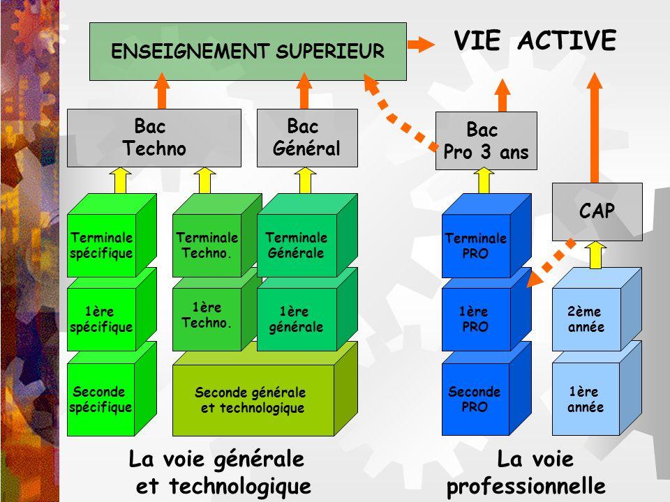 VIE ACTIVE La voie générale La voie et technologique professionnelle Seconde spécifique 1ère spécifique Seconde générale et technologique 1ère Techno.