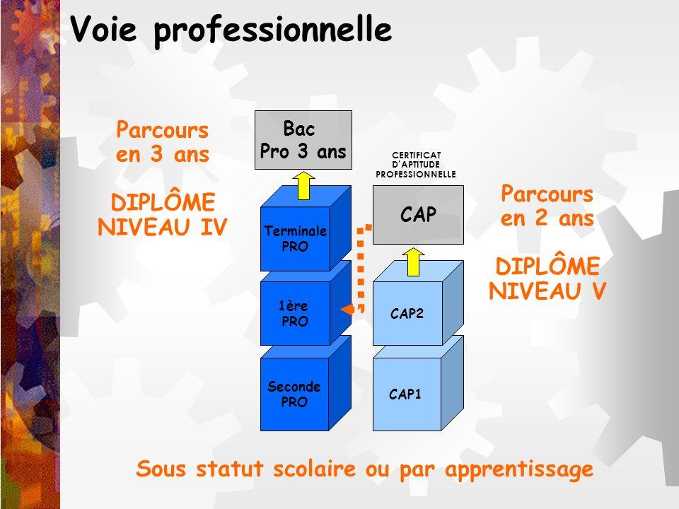 Voie professionnelle CAP1 CAP2 Seconde PRO 1ère PRO Terminale PRO Bac Pro 3 ans CAP CERTIFICAT DAPTITUDE PROFESSIONNELLE Parcours en 3 ans DIPLÔME NIV