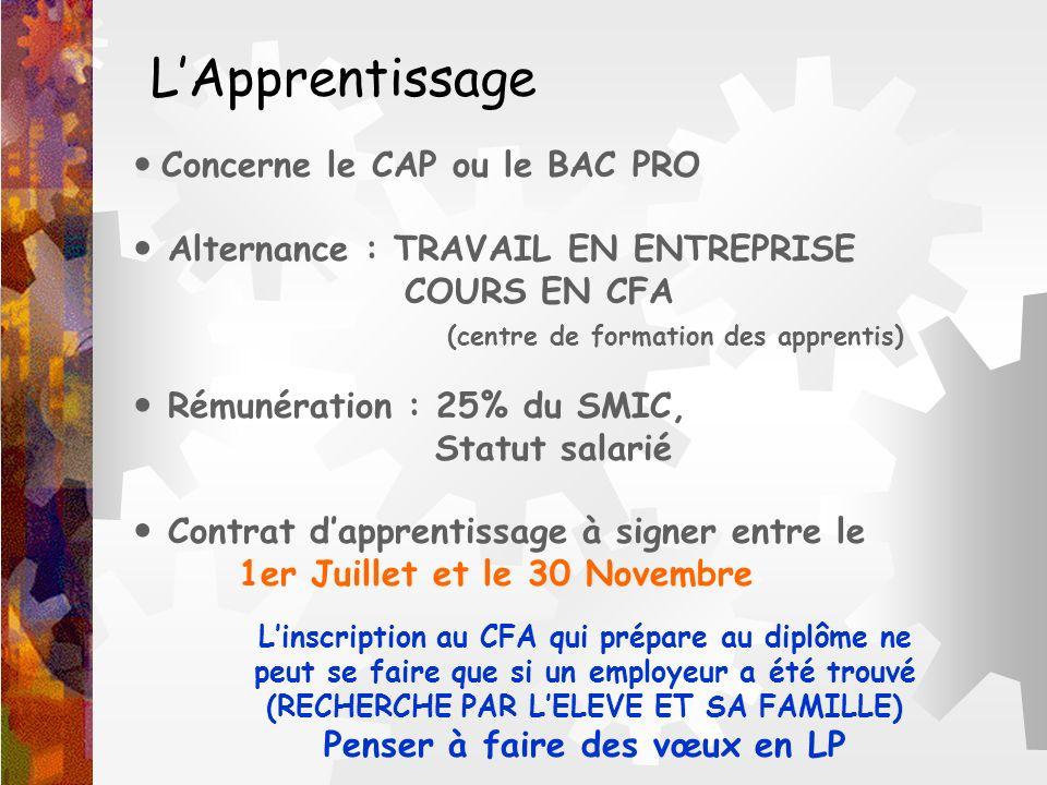 LApprentissage Concerne le CAP ou le BAC PRO Alternance : TRAVAIL EN ENTREPRISE COURS EN CFA (centre de formation des apprentis) Rémunération : 25% du