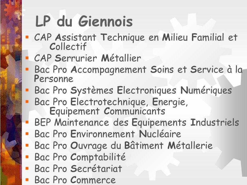 LP du Giennois CAP Assistant Technique en Milieu Familial et Collectif CAP Serrurier Métallier Bac Pro Accompagnement Soins et Service à la Personne B