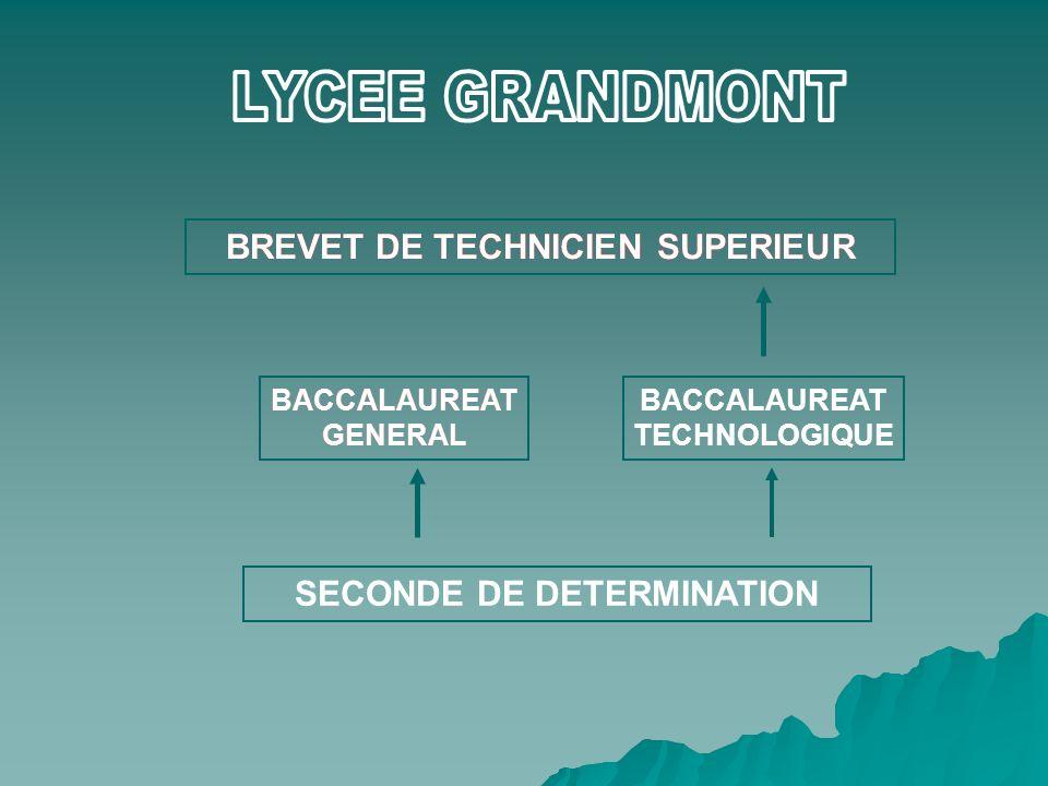 BREVET DE TECHNICIEN SUPERIEUR BACCALAUREAT GENERAL BACCALAUREAT TECHNOLOGIQUE SECONDE DE DETERMINATION BREVET DE TECHNICIEN SUPERIEUR BACCALAUREAT GE