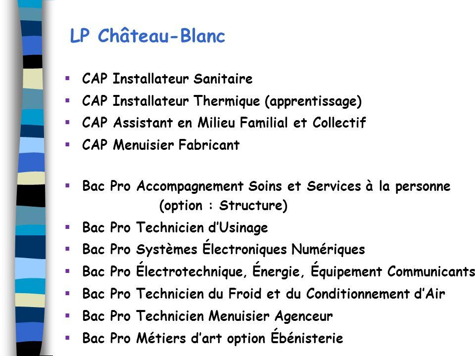 LP Château-Blanc CAP Installateur Sanitaire CAP Installateur Thermique (apprentissage) CAP Assistant en Milieu Familial et Collectif CAP Menuisier Fab