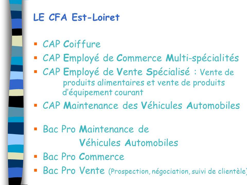LE CFA Est-Loiret CAP Coiffure CAP Employé de Commerce Multi-spécialités CAP Employé de Vente Spécialisé : Vente de produits alimentaires et vente de