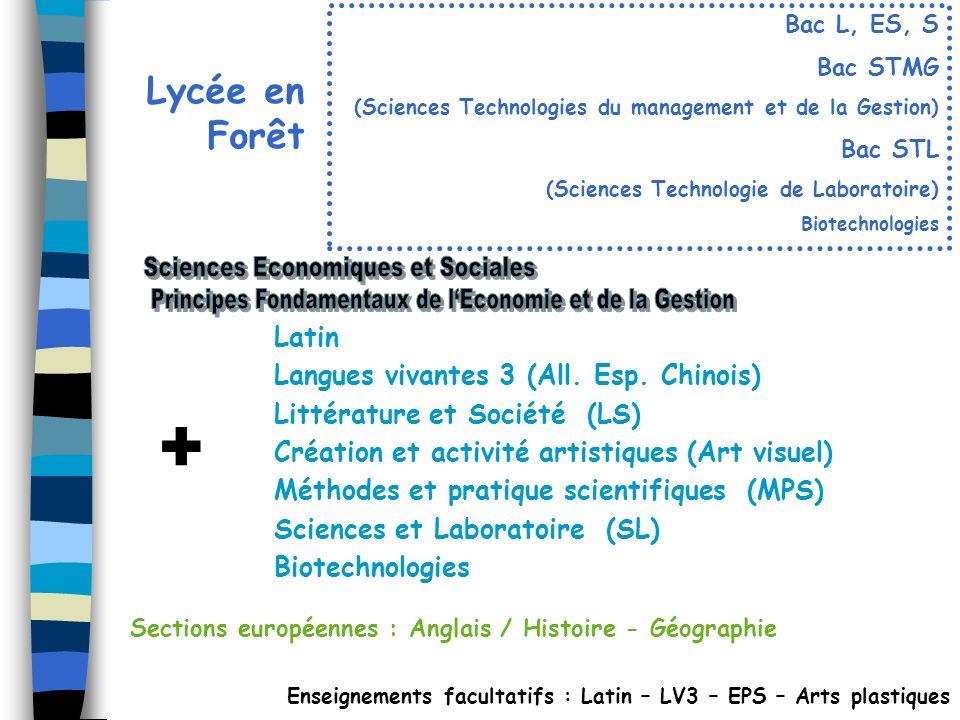Lycée en Forêt Enseignements facultatifs : Latin – LV3 – EPS – Arts plastiques Sections européennes : Anglais / Histoire - Géographie Latin Langues vi