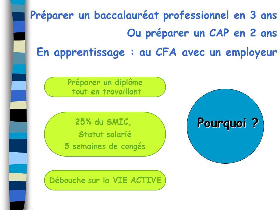 Préparer un diplôme tout en travaillant Préparer un baccalauréat professionnel en 3 ans Ou préparer un CAP en 2 ans En apprentissage : au CFA avec un