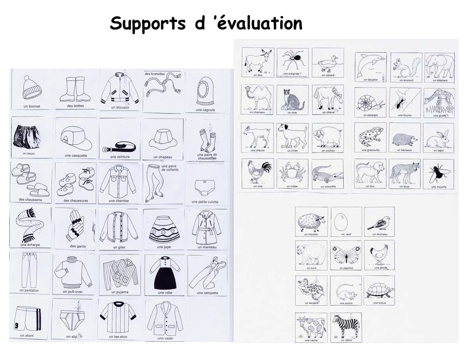 Supports d évaluation