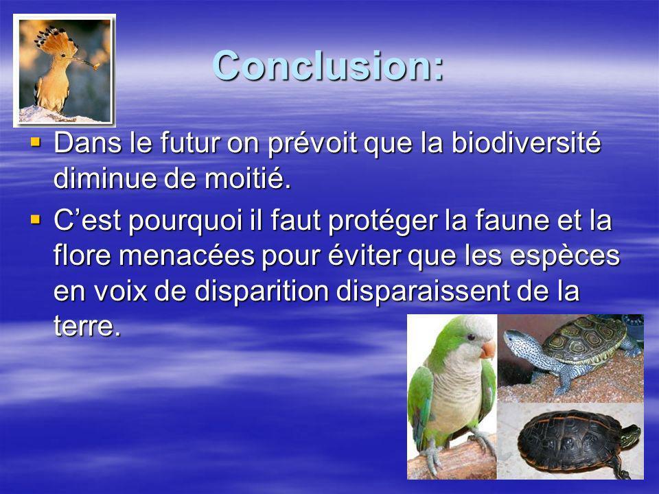 Conclusion: Dans le futur on prévoit que la biodiversité diminue de moitié. Dans le futur on prévoit que la biodiversité diminue de moitié. Cest pourq