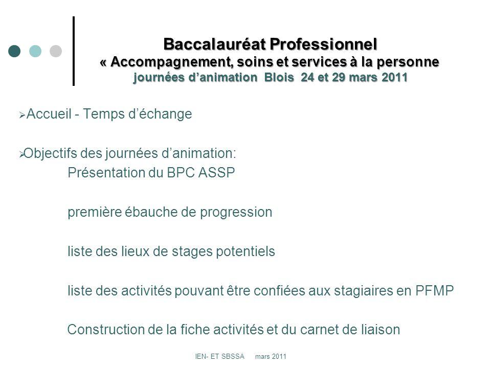 Baccalauréat Professionnel « Accompagnement, soins et services à la personne journées danimation Blois 24 et 29 mars 2011 Baccalauréat Professionnel «