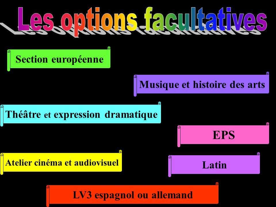 Section européenne Musique et histoire des arts Théâtre et expression dramatique EPS Atelier cinéma et audiovisuel Latin LV3 espagnol ou allemand