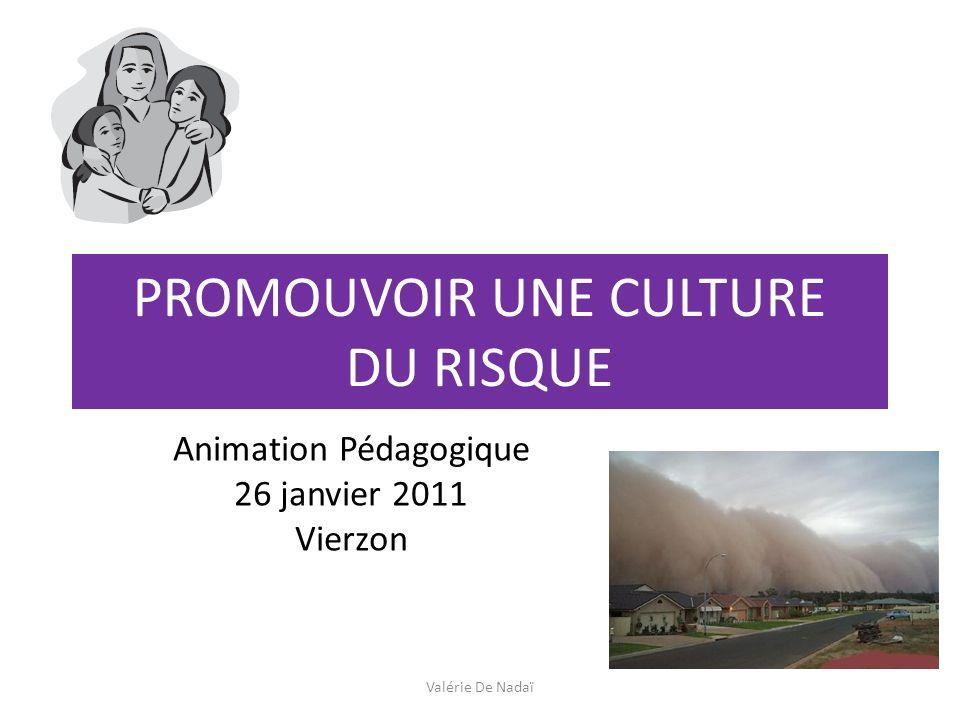 PROMOUVOIR UNE CULTURE DU RISQUE Animation Pédagogique 26 janvier 2011 Vierzon Valérie De Nadaï