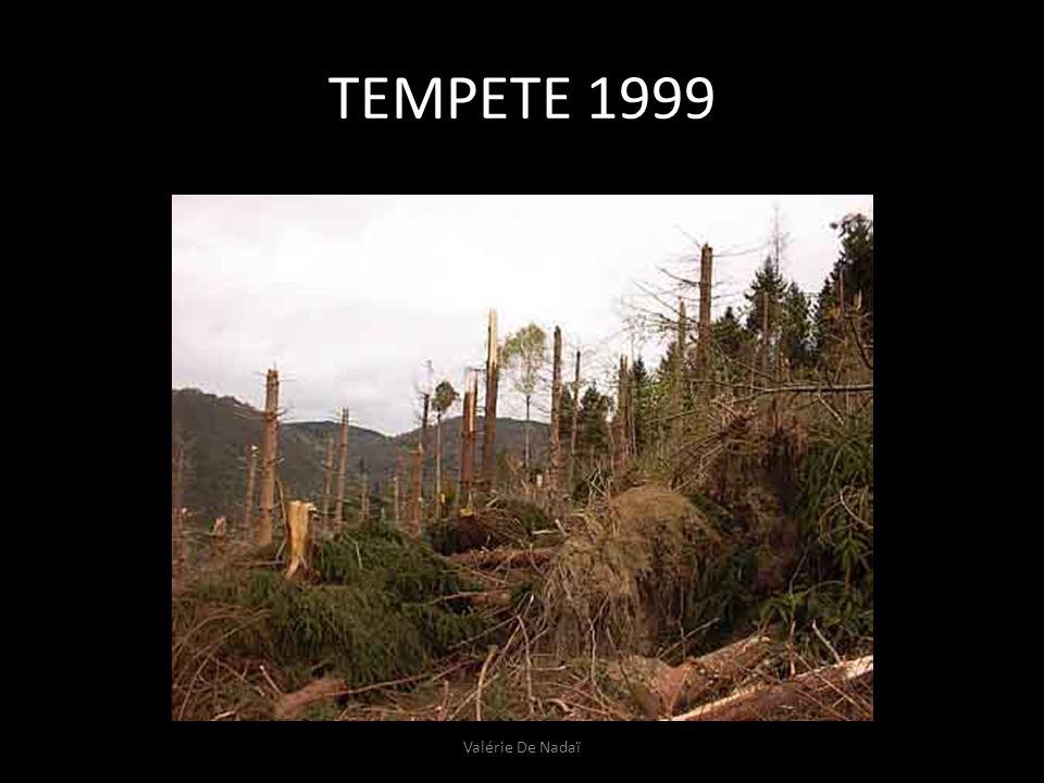 TEMPETE 1999 Valérie De Nadaï