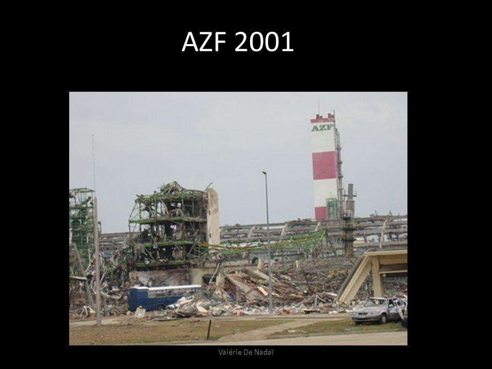 AZF 2001 Valérie De Nadaï