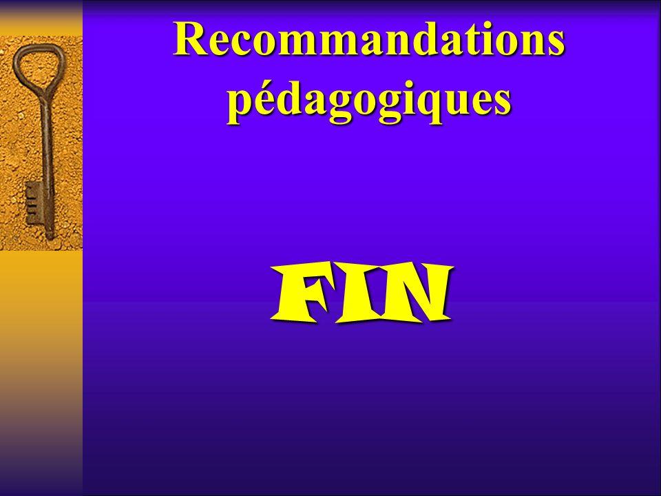 Recommandations pédagogiques FIN