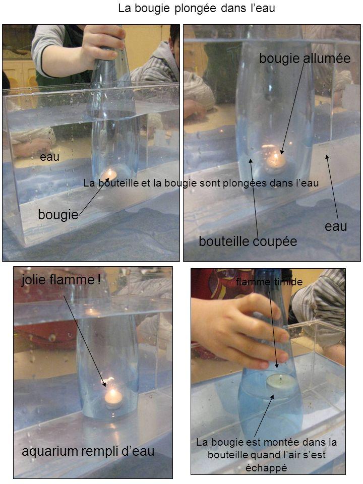 Nous avons utilisé : - un récipient en verre ou en plastique (aquarium) - un bouchon en liège - une bouteille plastique sans fond qui a encore son bouchon visé sur le haut de la bouteille.